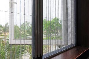 cửa kính lùa chống muỗi